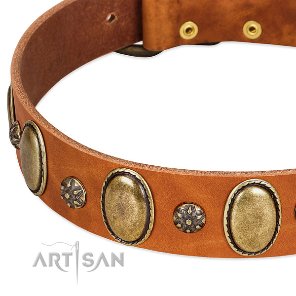 Everyday use reliable leather dog collar