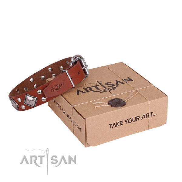 Easy wearing dog collar with Exquisite rust-proof adornments