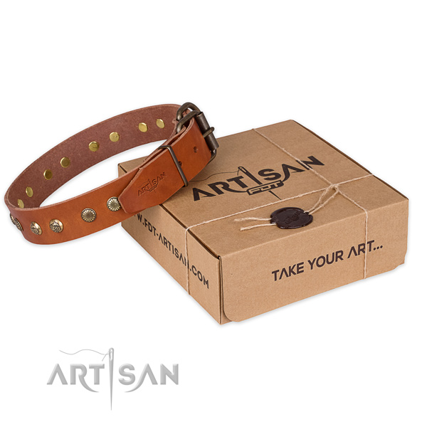 Rust-proof buckle on leather collar for your attractive dog