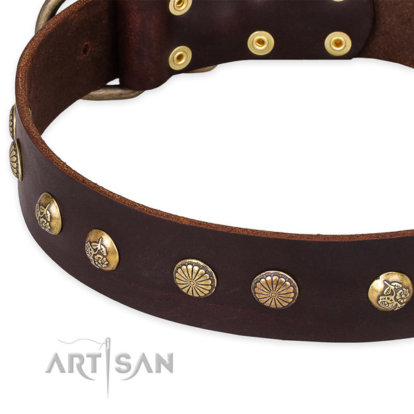 Full grain natural leather collar with corrosion proof hardware for your lovely pet