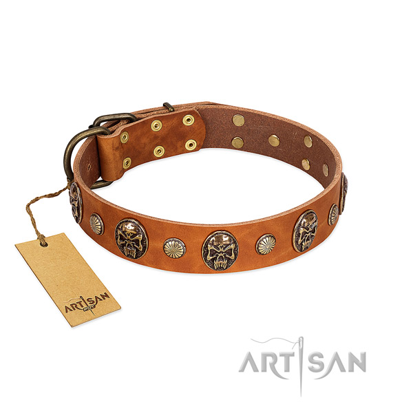 Adjustable genuine leather dog collar for everyday use