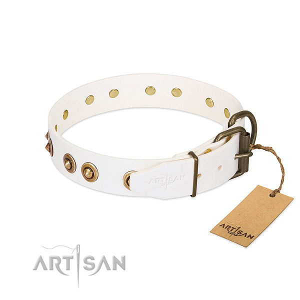 Corrosion proof decorations on leather dog collar for your pet