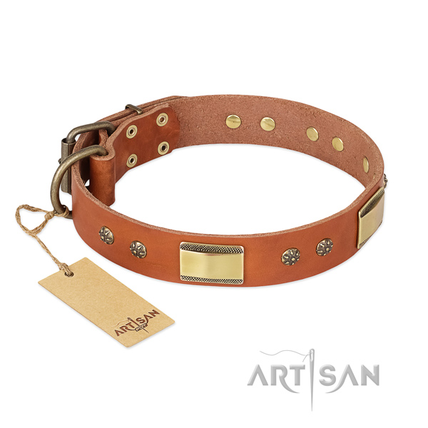 Adorned genuine leather collar for your doggie