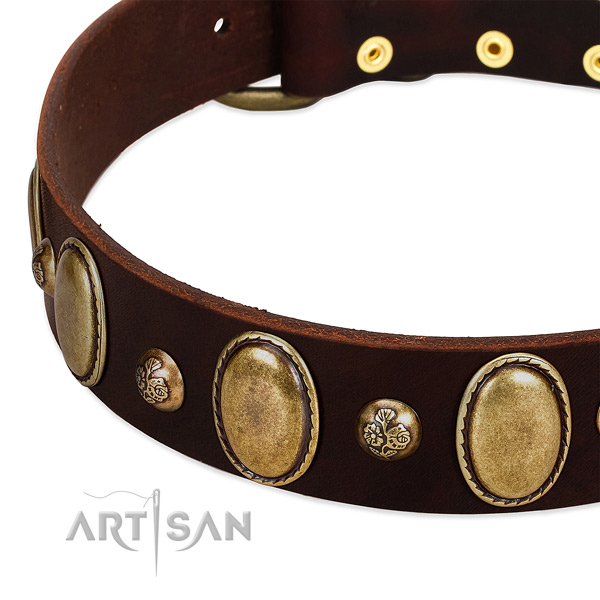 Full grain natural leather dog collar with top notch decorations