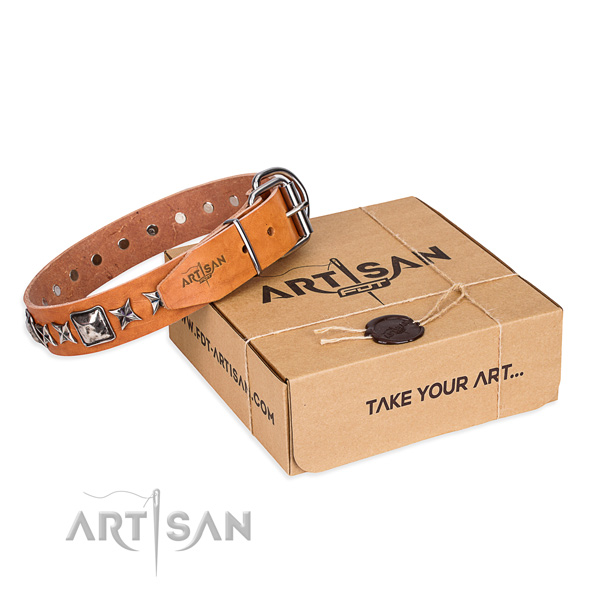 Everyday walking full grain natural leather dog collar with adornments