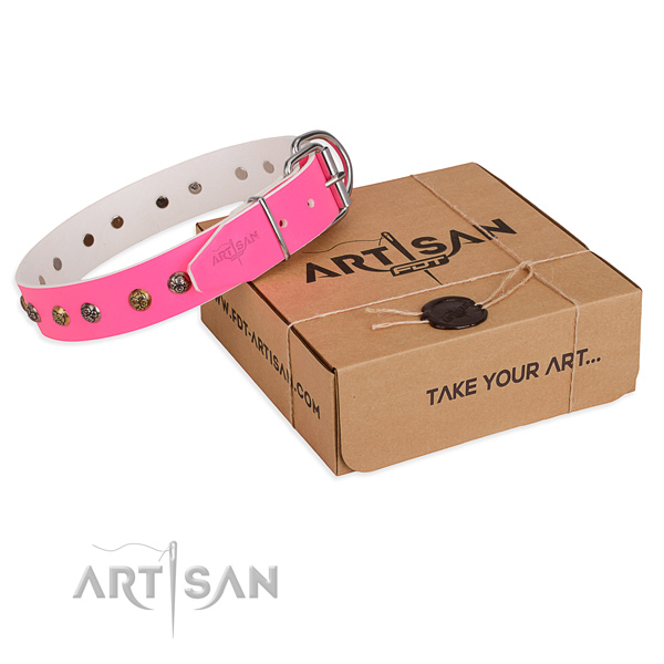 Daily walking dog collar with Inimitable durable decorations