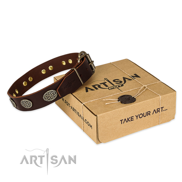Corrosion proof fittings on full grain genuine leather collar for your lovely canine