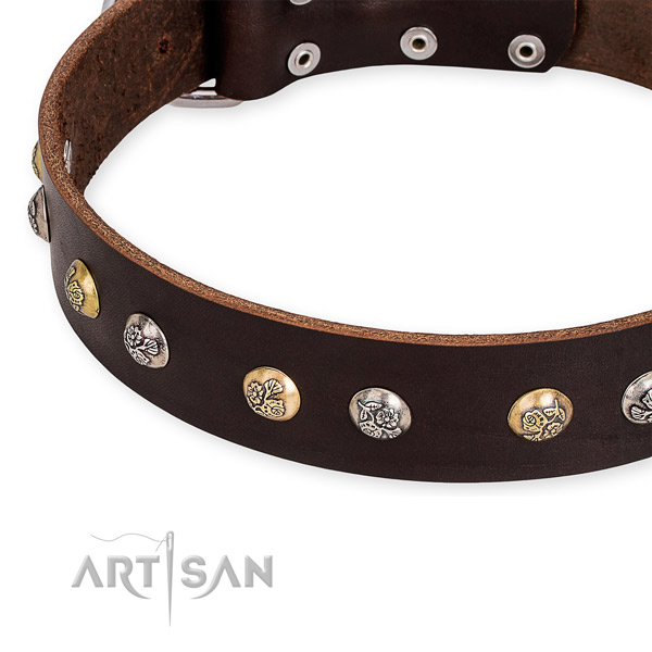 Full grain genuine leather dog collar with awesome rust-proof embellishments