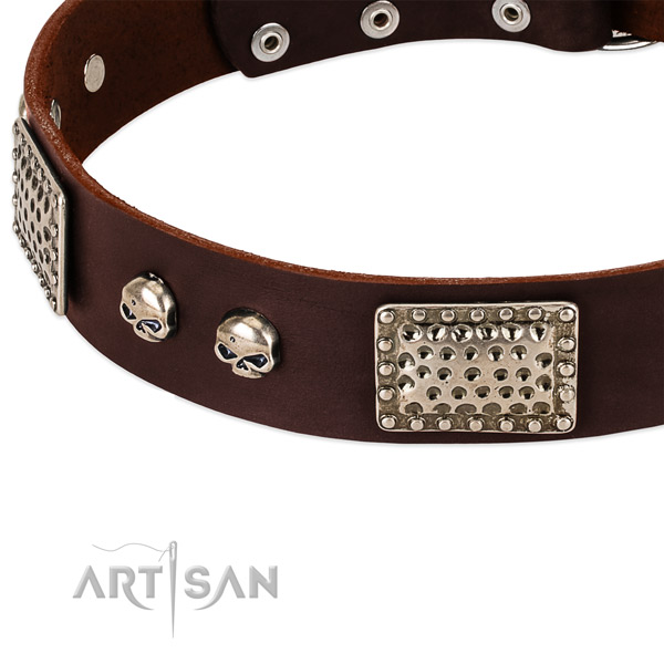 Corrosion resistant decorations on leather dog collar for your canine