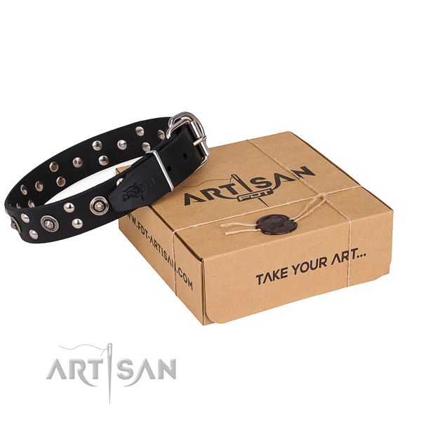 Everyday walking dog collar with Exquisite corrosion proof embellishments