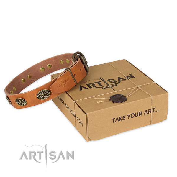 Strong traditional buckle on genuine leather collar for your beautiful four-legged friend