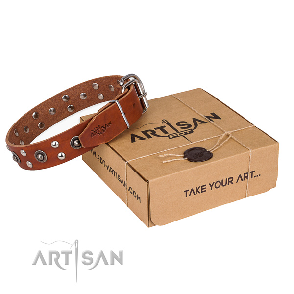 Corrosion resistant traditional buckle on genuine leather collar for your impressive dog