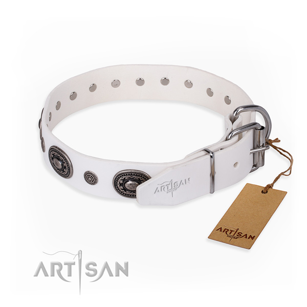 Durable full grain leather dog collar made for everyday walking