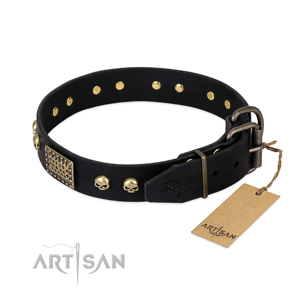 Rust resistant decorations on basic training dog collar