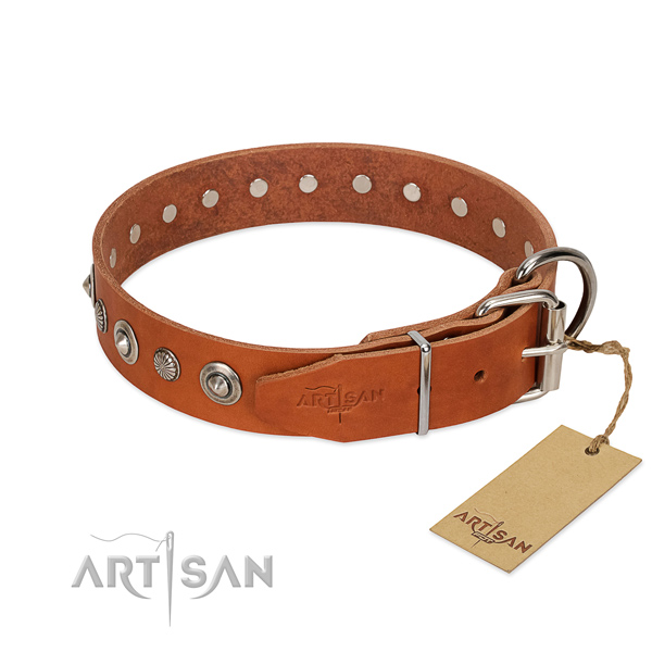 Strong leather dog collar with unique studs