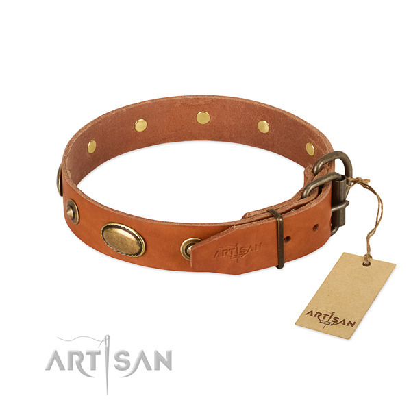 Rust resistant buckle on full grain leather dog collar for your pet