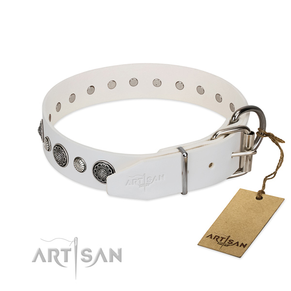 High quality leather dog collar with rust-proof fittings