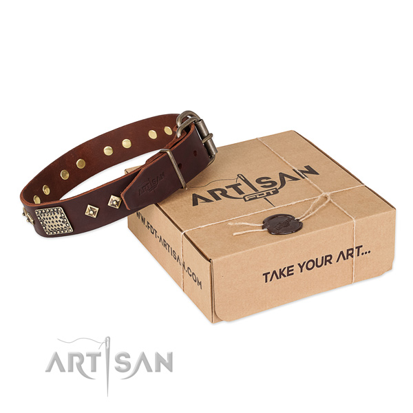 Easy wearing leather collar for your beautiful four-legged friend