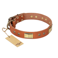 """Enchanting Spectacle"" FDT Artisan Tan Leather English Bulldog Collar with Old Bronze Look Plates and Round Studs"