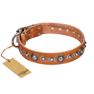 """Daily Chic"" FDT Artisan Tan Leather English Bulldog Collar with Decorations"