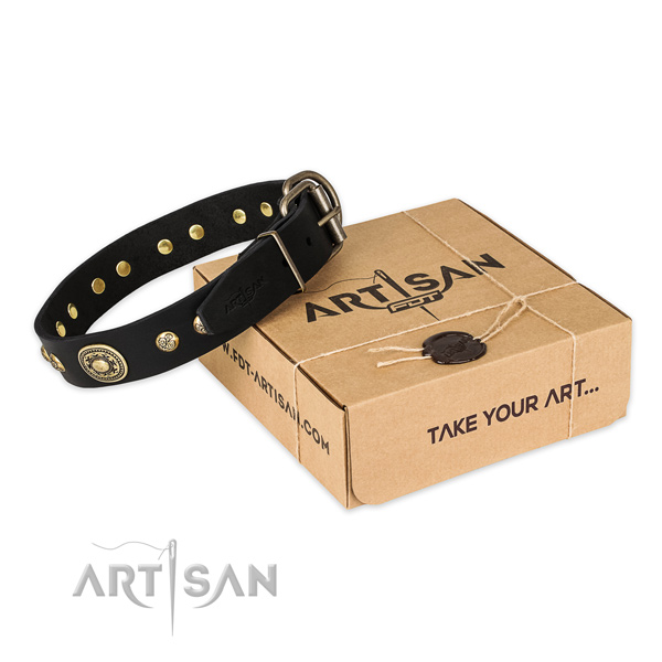 Durable traditional buckle on genuine leather dog collar for daily walking