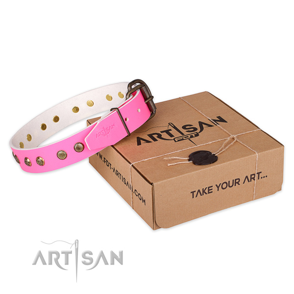 Strong hardware on leather collar for your lovely canine