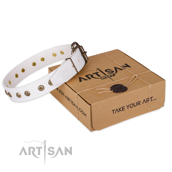 Reliable traditional buckle on full grain genuine leather collar for your attractive pet