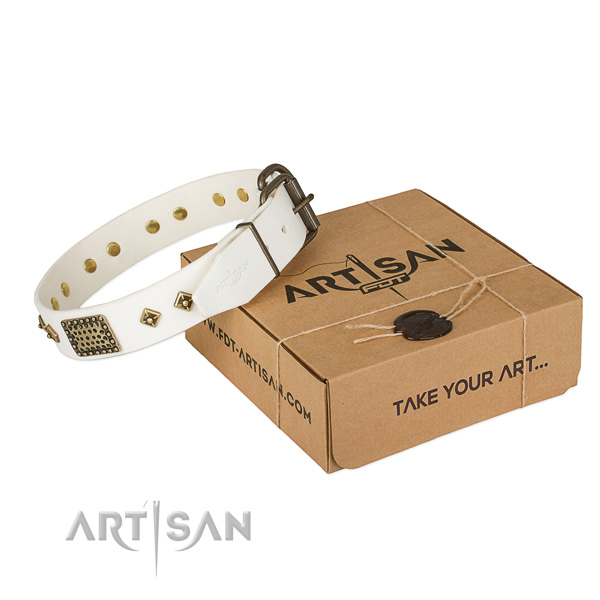 Exceptional genuine leather collar for your lovely doggie