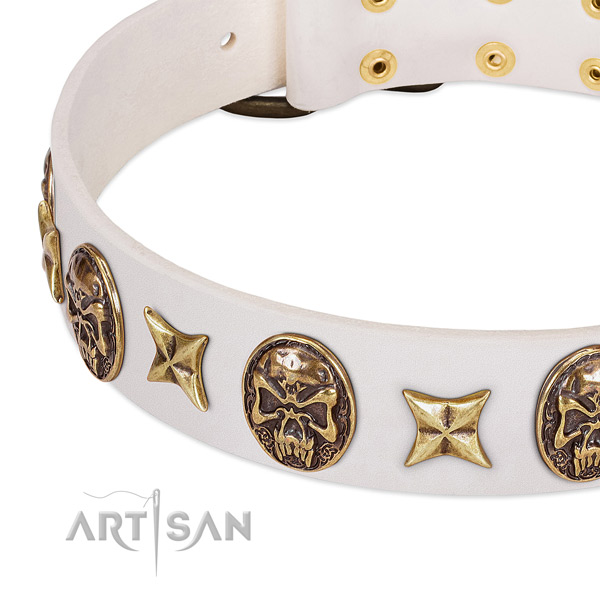 Easy to adjust dog collar handcrafted for your beautiful pet