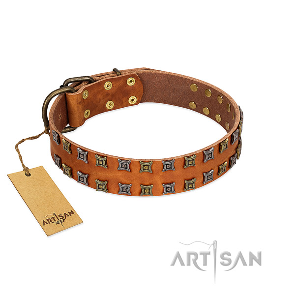 Soft natural leather dog collar with embellishments for your canine