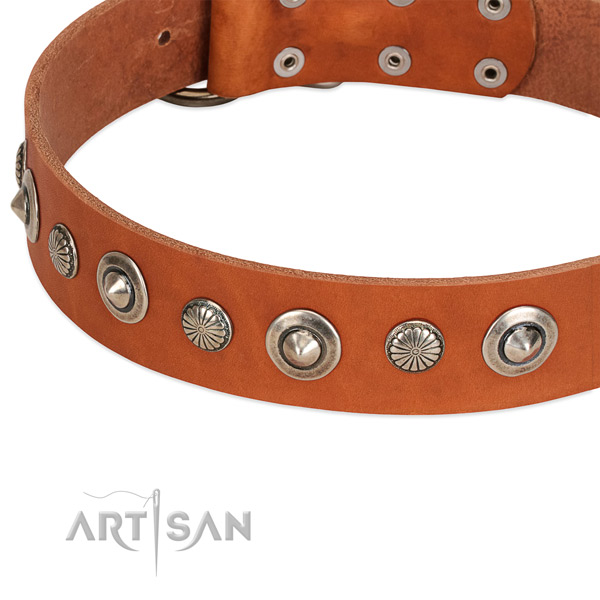 Unique adorned dog collar of high quality genuine leather