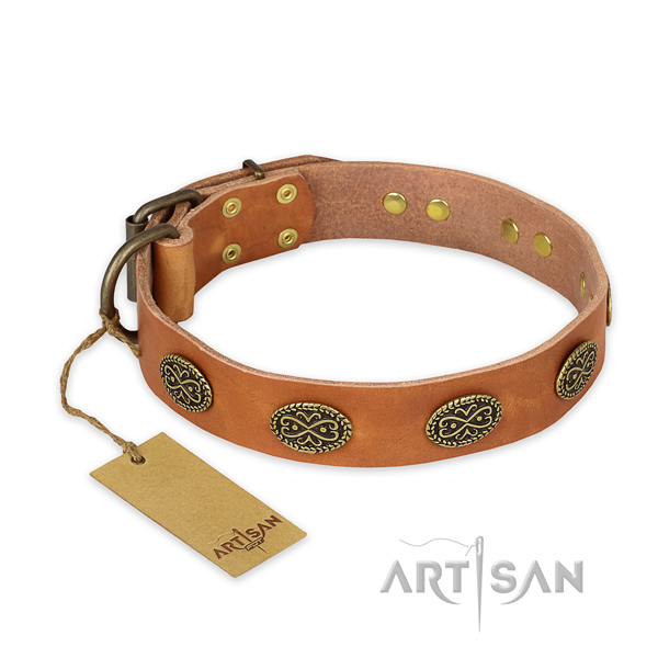 Top quality full grain leather dog collar with durable fittings