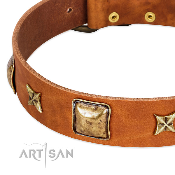 Corrosion proof D-ring on natural genuine leather dog collar for your canine