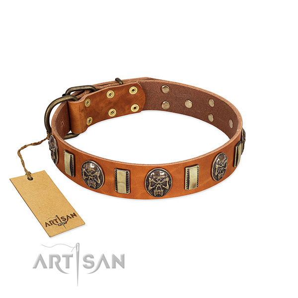 Handcrafted full grain leather dog collar for daily walking