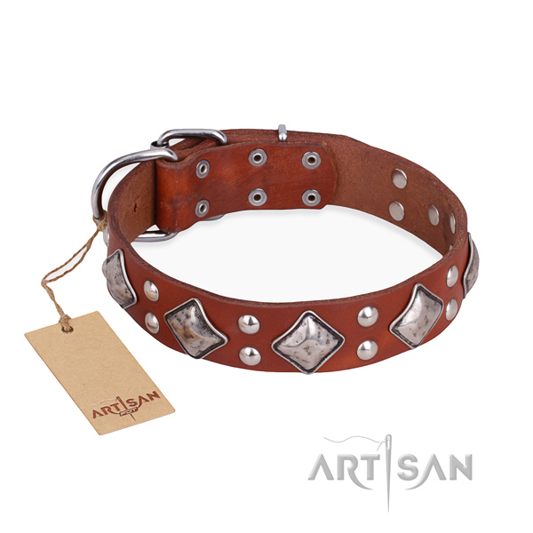 Everyday walking studded dog collar with corrosion resistant traditional buckle