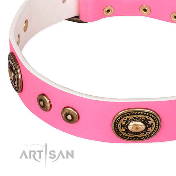 Leather dog collar made of top notch material with embellishments