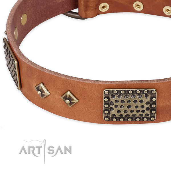 Corrosion proof buckle on full grain natural leather dog collar for your dog