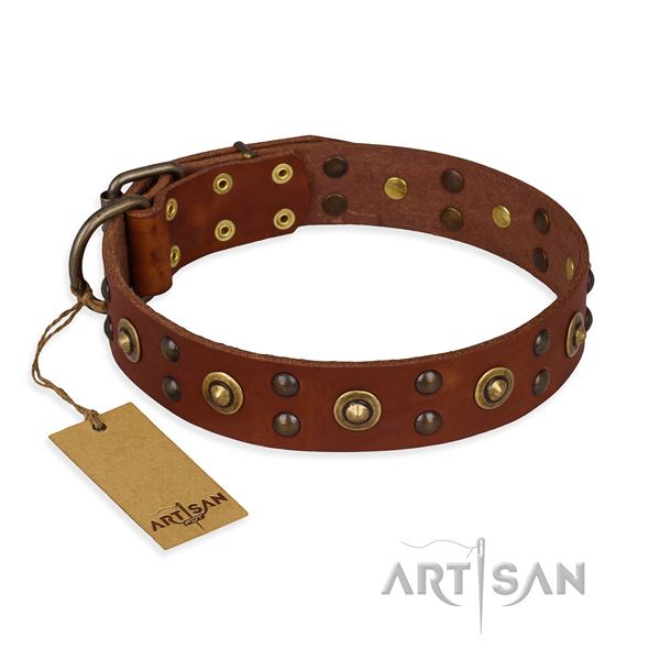 Embellished full grain leather dog collar with corrosion proof hardware