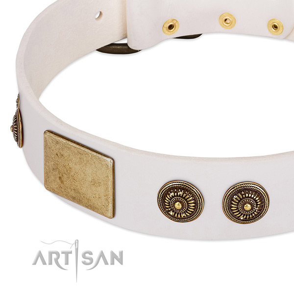 Significant dog collar handcrafted for your handsome canine