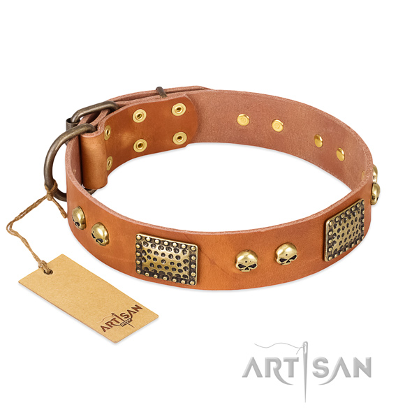 Adjustable genuine leather dog collar for walking your dog