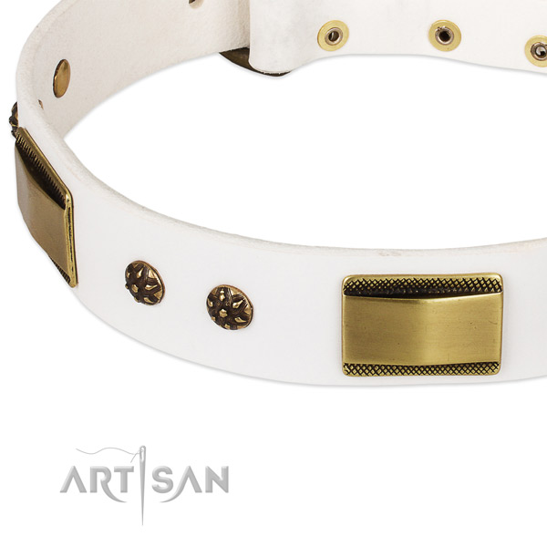 Reliable fittings on natural genuine leather dog collar for your pet