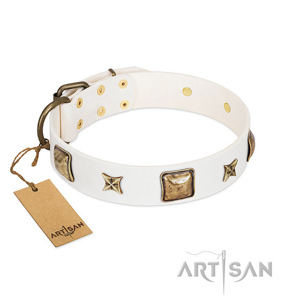 Unique leather dog collar for fancy walking