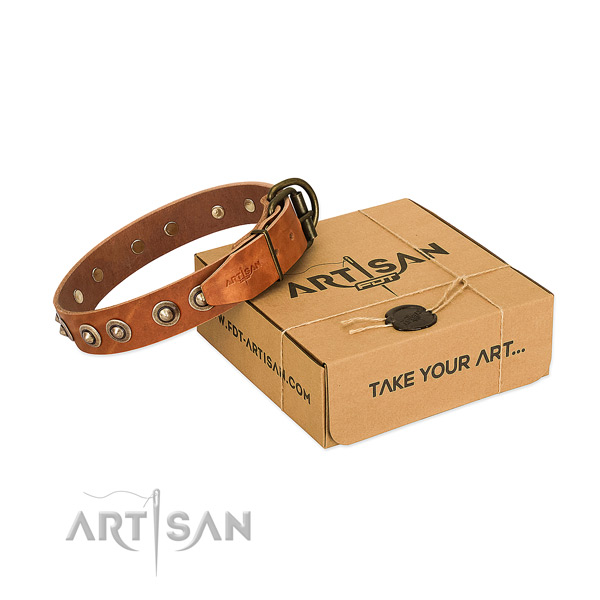 Corrosion resistant adornments on leather dog collar for your pet
