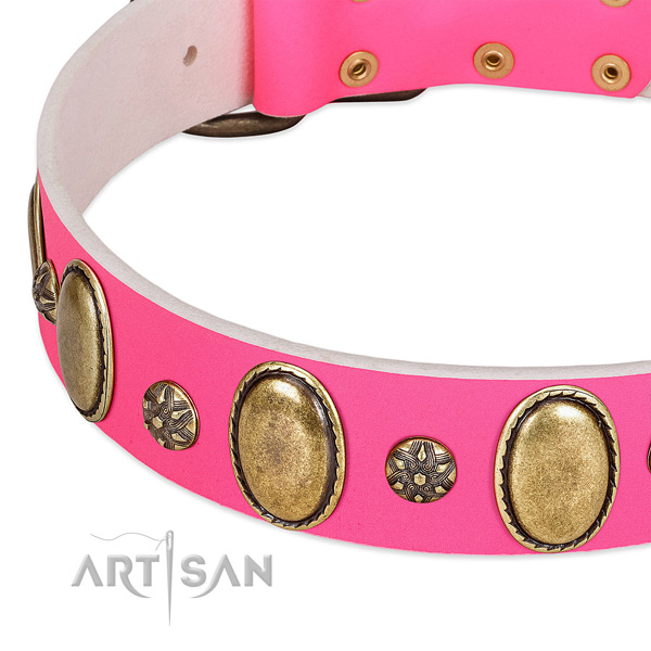 Top notch leather dog collar with corrosion resistant fittings