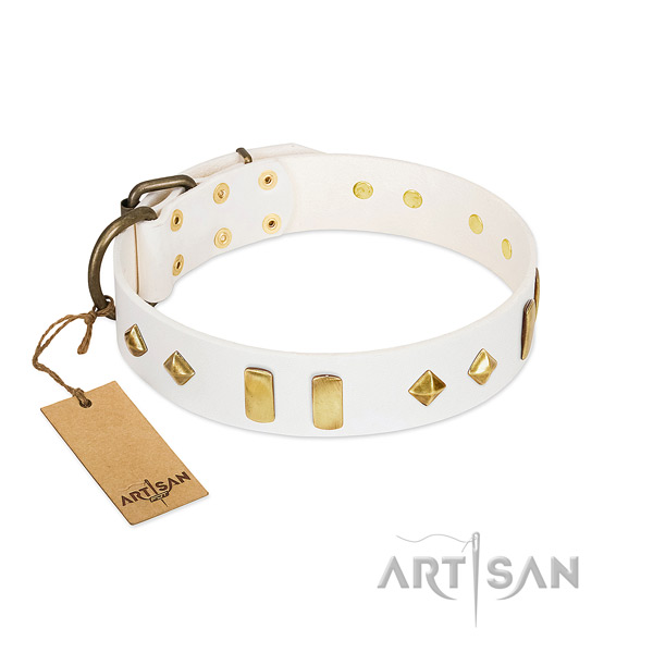 Daily use soft to touch leather dog collar with decorations