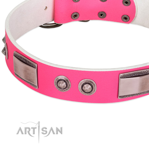 Fine quality genuine leather collar with studs for your four-legged friend