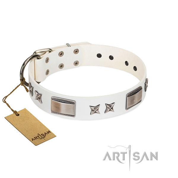 Top quality dog collar of natural leather