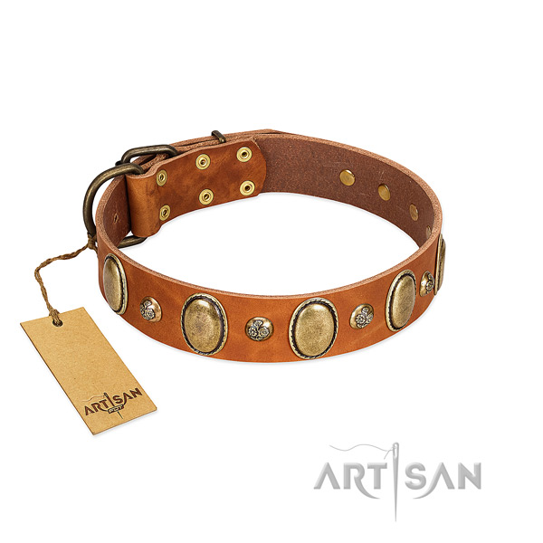 Full grain natural leather dog collar of top notch material with inimitable embellishments