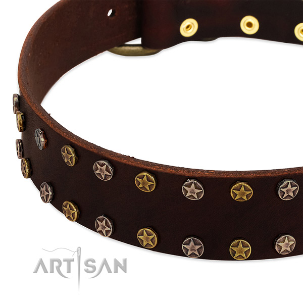 Comfortable wearing full grain natural leather dog collar with awesome adornments
