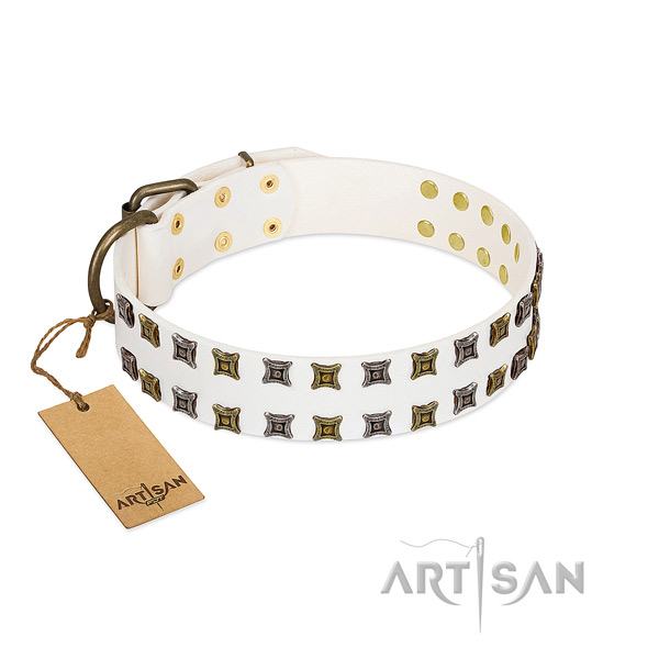 Gentle to touch full grain genuine leather dog collar with adornments for your four-legged friend